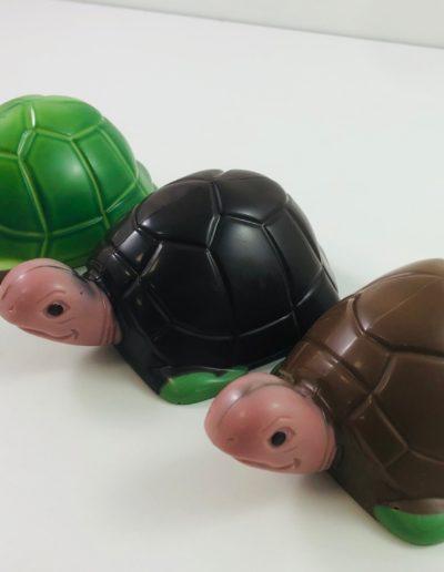 tortues assorties